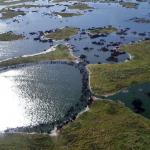 O Pantanal está ameaçado pela ação humana